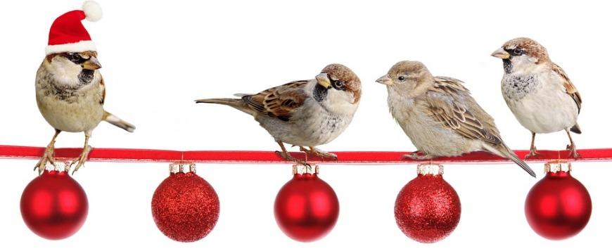 7 признаков новогоднего настроения